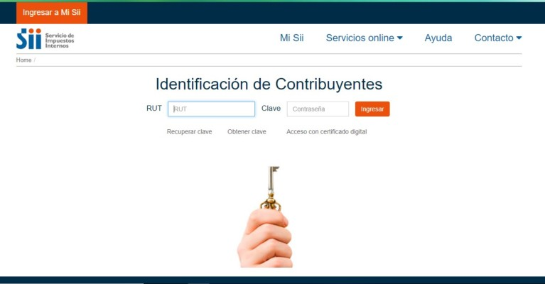 identificacion de contribuyente